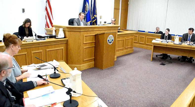 Grand Island Town Council