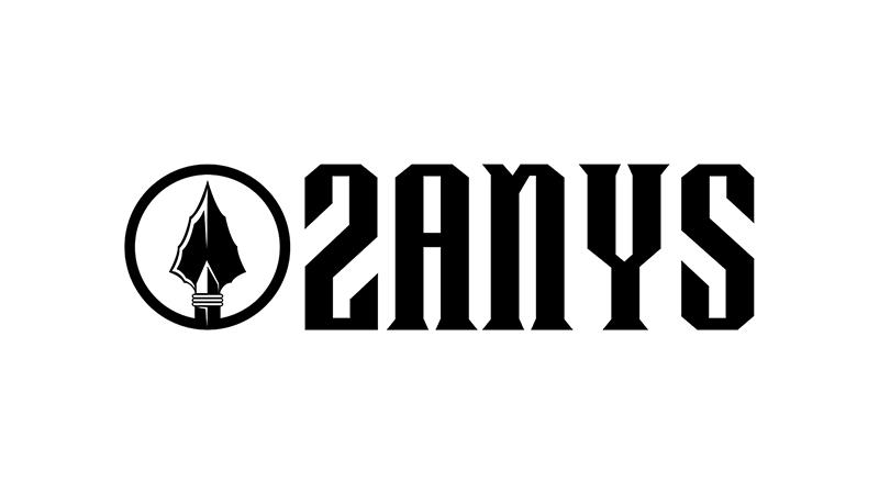 2ANYS Logo
